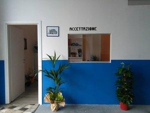 AUTOFFICINA ERRE ESSE SNC di Brogna Riccardo & C. snc