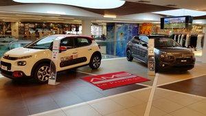 AMB le privilege srl Citroen Peugeot Schio